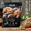 【送料無料】 無添加 生くるみ 4.8kg(400g×12袋) オメガ3脂肪酸 栄養豊富なクルミ 無塩 無添加のナッツ(くるみ)人気…