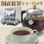 100%純国産茶葉の紅茶ティーバッグ