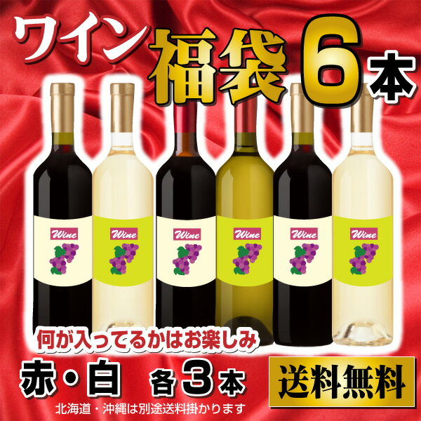 【送料無料】訳ありおまかせ いろいろ ワイン福袋 赤ワイン 白ワイン 計6本 アウトレット ワインセット 飲み比べ
