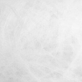 【送料無料】タイベック(R)低溶剤インクジェット用EC1082-B 小巻品(ロール) 1300mmx40m 300μ 3インチ【旭・デュポン】【デザイン・製図用品 ハンドクラフトサポートショップ トモエ堂】