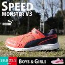 Puma-spmon-v3-1