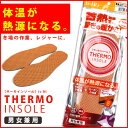 Thermo ins 1