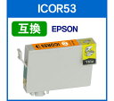 097 icor53 img01