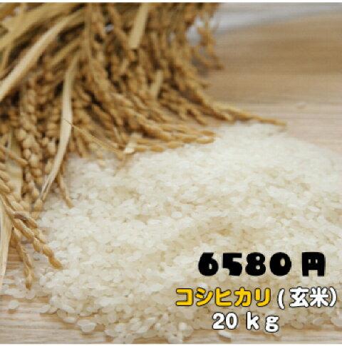 30年福島県産コシヒカリ玄米20キロ 小分け 10kg精米可 こしひかり ふくしまプライド 送料込 ギフト のし対応 20kg 贈答用