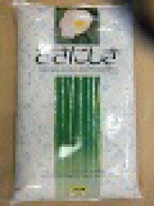 令和元産庄内産ササニシキ白米24kg