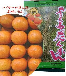 屋久島「バイヤーが選んだ美味しいもん」糖度センサー選果 タンカン 1箱L〜3L寸(4.5kg)20玉〜30玉 ※大きさにより入り数が異なります。