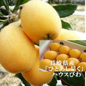 長崎県産 ハウス栽培 びわ(家庭用) L〜2L寸 1箱400g(9〜12玉)※少しスレ傷があります 簡易包装でのお届けとなります。