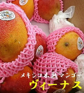 本物の味!!濃厚さと香ばしさ メキシコ産 木熟マンゴー 「ヴィーナス」 2玉(1玉当たり400g〜450g)1箱