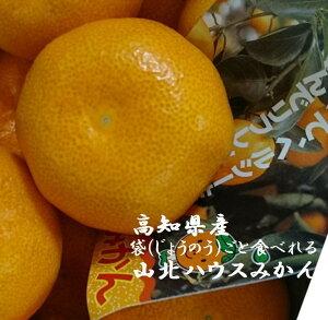 高知県産 「バイヤーが選んだ美味しいもん」山北のハウスみかん L〜M寸 4.5kg(35玉〜50玉)1箱