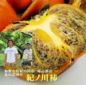 和歌山県産紀の川市味心部会 北田農園 作 「濃厚な甘味 固くてもやわらかくても美味しい」まろやかな甘みの味心紀の川柿(家庭用)M〜3L混合 7kg