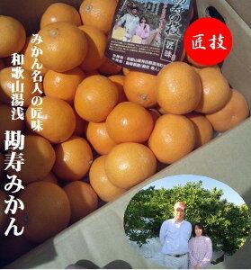 和歌山県有田 勘寿みかん 4.5kg(L寸〜S寸)1箱