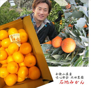 和歌山県紀の川市味心部会 北田農園 樹上で一番長くなる品種「自信作」石地みかん1箱3kg(S〜2S寸)