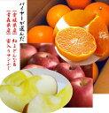 (愛媛ブランド)愛媛県産 バイヤーが選んだ美味しいもん 「紅まどんな」1箱1.5kg(3L〜M寸混合)&(蜜入り選果)…