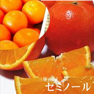 赤い果皮の「セミノール」 三重南紀産 1箱9kg(M〜L寸)