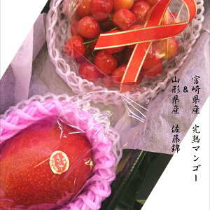 「バイヤーが選んだ美味しいもん」宮崎県産 完熟マンゴー2L寸1玉&山形県産 ハウス栽培佐藤錦100g入り1パック 化粧箱入り