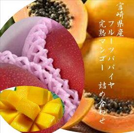 「宮崎県産フルーツパパイヤ」「宮崎県産完熟マンゴー」国産ならではの味わい!!各1玉入り(800g〜900g)