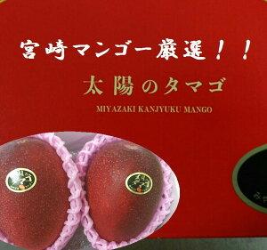 宮崎県産 宮崎マンゴーの厳選品「太陽のタマゴ」1箱2L寸2玉※箱のデザインは代わります。
