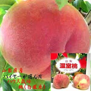 山梨県産 ひとあし早くに甘みの強さを重視した温室栽培桃(白鳳系) 1箱1kg(5〜6玉)