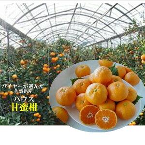 バイヤーが選んだ 佐賀県産 ハウス「甘蜜柑」M〜S寸 1箱 4.5kg