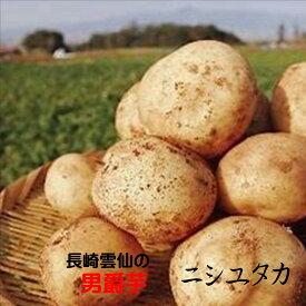 新物は九州産がうまい!!長崎県雲仙 男爵芋「ニシユタカ」M〜2L寸 1箱4kg