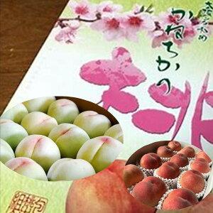 かねちかの桃 大阪岸和田産 1箱(1kg3〜5玉)※大きさにより個数が異なります