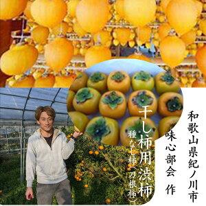 「干し柿用渋柿」和歌山県産紀の川市味心部会作 「種なし」味心干し柿用渋柿(枝付き)(L〜3L寸)3kg(9〜15玉)※干し柿用渋柿です。生食用ではございません。