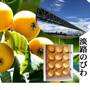 兵庫県淡路島産 淡路のびわ 家庭用 1箱600g(9〜12玉)※露地栽培のため少しスレ傷があります。品種は「田中」か「茂木」のどちらかになります。