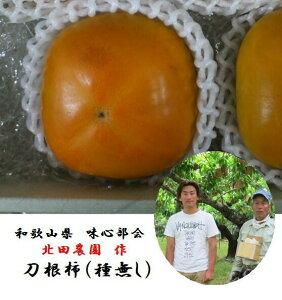 (産地直送)和歌山県産紀の川市味心部会 北田農園 作 「やわらかくなるとよりおいしい」味心種無し柿(刀根柿)2L〜3L寸5kg(16〜20玉)※個数が前後する場合がございます