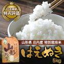 【送料無料】【山形県庄内産】特別栽培米はえぬき5kg