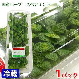 【食用ハーブ】大阪府産 スペアミント 1パック