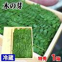 和歌山県産 木の芽 秀品 1箱