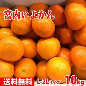 【送料無料】愛媛県産 宮内いよかん 秀 L〜2Lサイズ 10kg