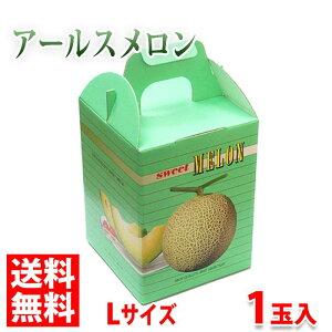 【送料無料】熊本県産アールスメロン Lサイズ 1玉【化粧箱入り】