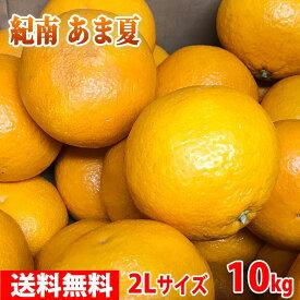 【送料無料】紀南 あま夏 秀品・2Lサイズ 10kg