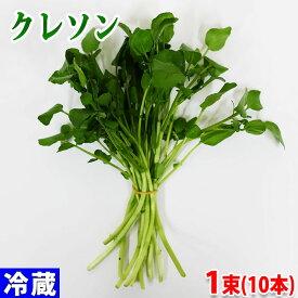 和歌山県産 クレソン 秀品 1束10本(約10g)
