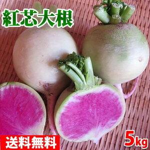 【送料無料】静岡県産 紅心だいこん 約5kg 10〜15個入り