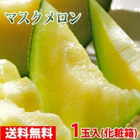 【送料無料】静岡県産 マスクメロン 1玉1.3kg以上(化粧箱入り)