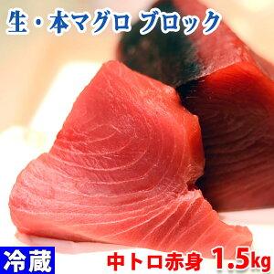 生・本マグロ 中トロ・赤身ブロック 約1.5kg(国産・養殖)背側