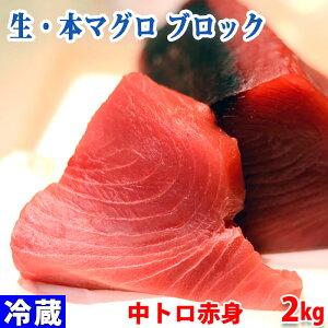 生・本マグロ 中トロ・赤身ブロック 約2kg(国産・養殖)背側