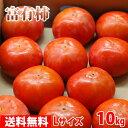 【送料無料】奈良県産 富有柿 秀品・L(約42玉入り)10kg箱