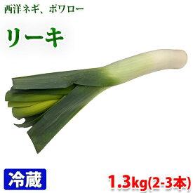 ベルギー産 リーキ 1〜1.3kg(2〜3本)/袋詰め