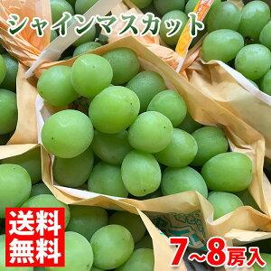 【送料無料】長野県産 シャインマスカット 7〜8房入り 5kg