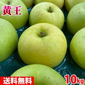 【送料無料】 青森県産 りんご きおう(黄王) 28〜36玉入り 10kg