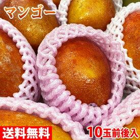 【送料無料】台湾産 完熟マンゴー(愛文マンゴー) 10玉前後入 5kg
