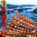 車エビ 活 車海老 特大[L 250g] 活き 送料無料 熊本県天草産 全国初のくるまえび養殖発祥の地 産地直送 獲れたて新鮮 養殖場直送 高級ギフト クルマエビ 通販 人気