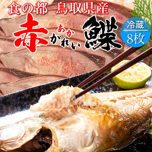 赤ガレイ カレイ 鰈 約3.7kg(8枚) 赤かれい 加熱用 特大サイズ 魚 生 鮮魚 鳥取県 山陰沖産 ふるさと 季節 旬の魚 煮つけ フライ ムニエル 焼き魚 自家製干物 一夜干し ふっくら 高たんぱく 低脂