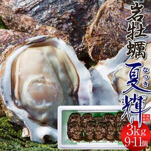 牡蠣 カキ 岩牡蠣 特大 天然物 夏輝(なつき) 3kg[9-11個入]鳥取県産 岩がき 生食用 刺身 海のミルク 焼きガキ カキフライ 大ぶり 3キロ 山陰高級いわがき 通販 産地直送 お取り寄せ お中元 夏