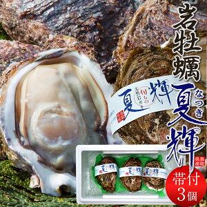 牡蠣 カキ 岩牡蠣 特大 天然物 夏輝(なつき) 3個入[ブランド帯付き]鳥取県産 岩がき 生食用 刺身 海のミルク 焼きガキ カキフライ 大ぶり 山陰高級いわがき 通販 産地直送 お取り寄せ お中