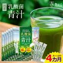 【送料無料】乳酸菌 国産青汁 4ヶ月分(3g×126本) [ギフト 青汁 酵素 健康 ダイエット 国産 大麦若葉 乳酸菌 100億個 …