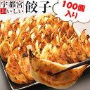 宇都宮おいしい餃子(冷凍) 100個 本場宇都宮より直送 宇都宮ギョーザ